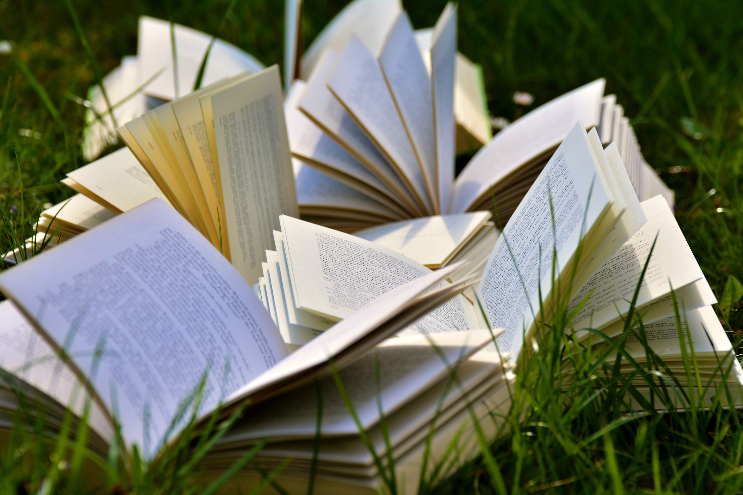 a collection of open books laid out on grass in sunshine