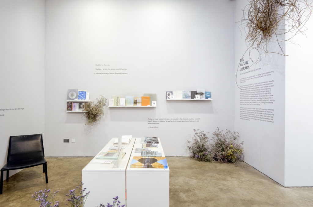 a gallery space with white walls and pale wood floors, with white tables and shelves filled with nature books and clusters of plant life in the corners